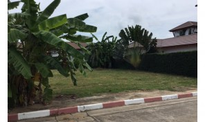 Land for sale on beach road, rayong good position near beach